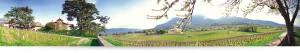 panoramique-domaine-la-violette-vins-savoie